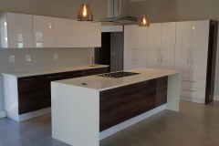 JFS Interiors_modern kitchen1